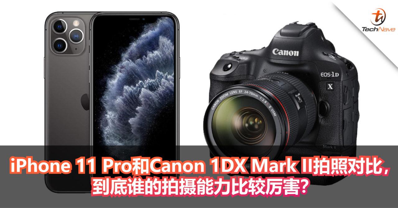 iPhone 11 Pro和Canon 1DX Mark II拍照对比,到底谁的拍摄能力比较厉害?