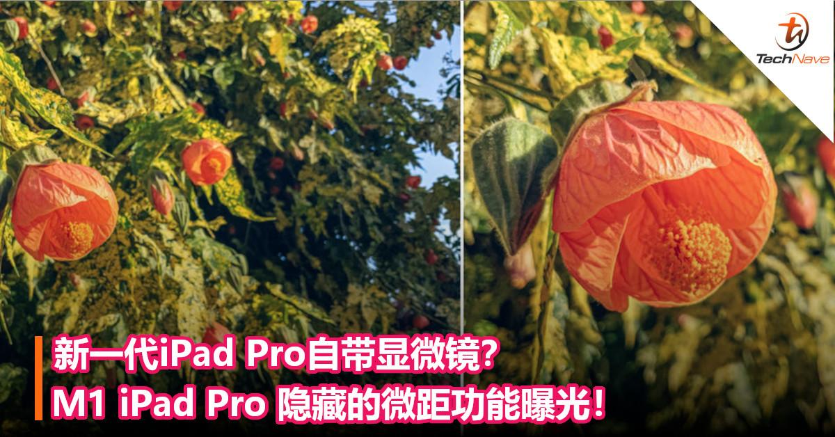 新一代iPad Pro自带显微镜?M1 iPad Pro 隐藏的微距功能曝光!
