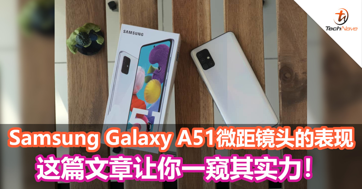 Samsung Galaxy A51微距镜头的表现,这篇文章让你一窥其实力!