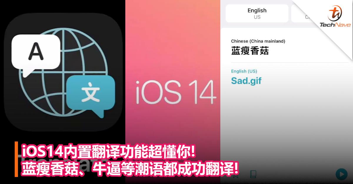 iOS14内置翻译功能超懂你! 蓝瘦香菇、牛逼等潮语都成功翻译!