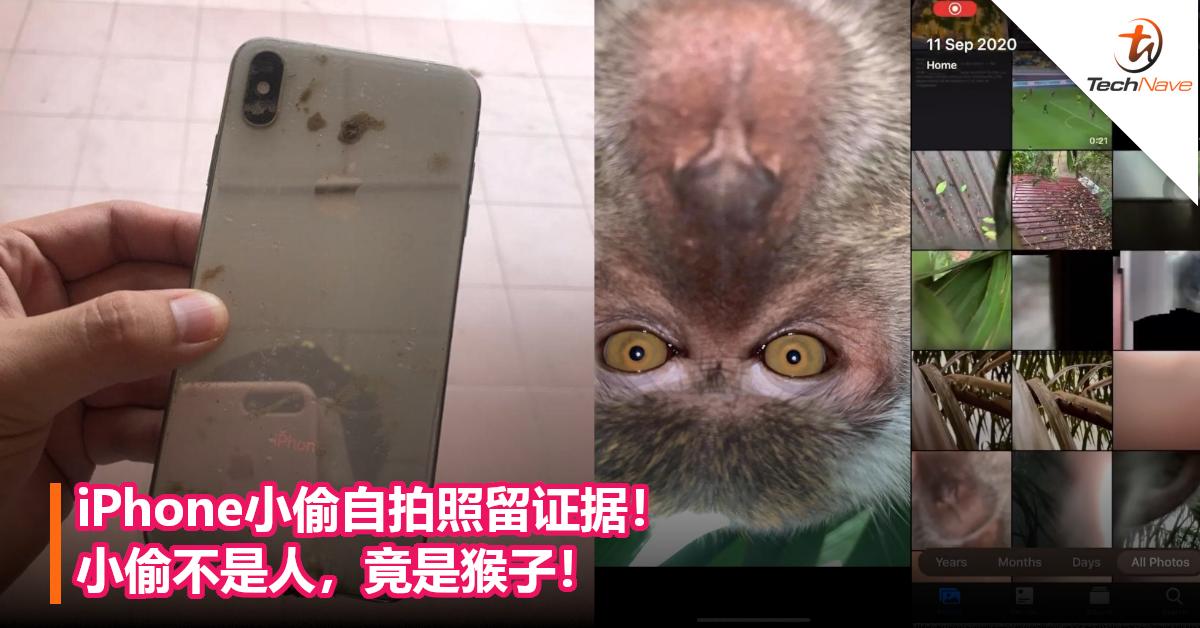 iPhone小偷自拍照留证据!小偷不是人,竟是猴子!